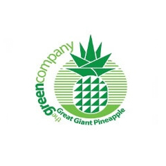 great giant pineapple