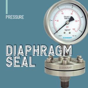 Diaphragm Seal